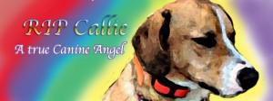 Callie RIP