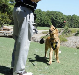 Canine Angels golfing outing
